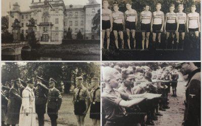 War Gustav pro-Nationalsozialismus?